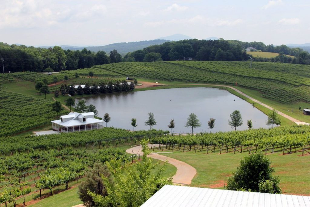 lake and vineyard