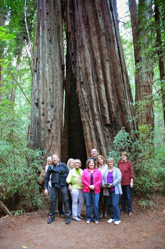 group standing in front of a tree